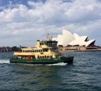 The trusty Sydney ferrries.