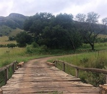 The bridge less crossed. Verlorenkloof, Mpumalanga.